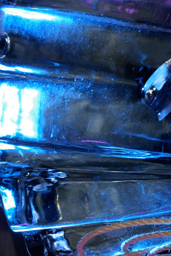 IJssculptuur-01